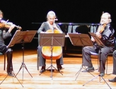 Concert Cello-Arte Grilly
